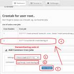 Script Jadwal Membersihkan File Logs Secara Otomatis Pada CWP Centos Web Server